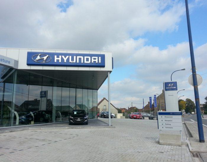 Hyundai Stree Pasture 02_res (9)