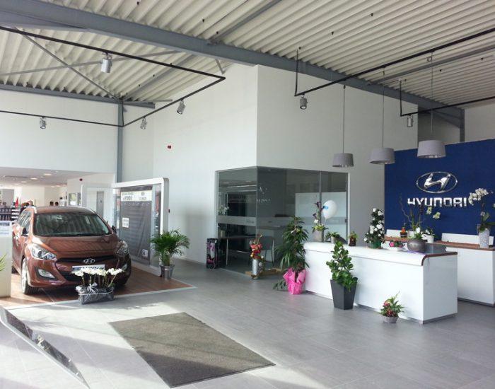Hyundai Stree Pasture 04_res (11)